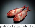 ปลา,ปลาน้ำเค็ม,ปลาทะเลลึก 39046353