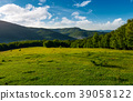 meadow, forest, morning 39058122