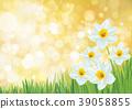 Vector  daffodil flowers. 39058855