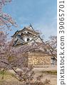 Hikone Castle (April Cherry blossoms clear) 39065701