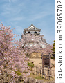Hikone Castle (April Cherry blossoms clear) 39065702