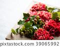 카네이션, 꽃꽂이, 꽃 39065992