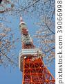 도쿄 타워와 벚꽃 39066998