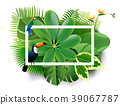 Tropical island spring of beautiful plants green  39067787