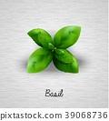 Fresh basil leaves 39068736