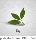 Green bay leaves 39068742