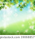 Spring background with white dandelions in grass 39068857