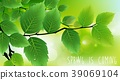 Green leaves background 39069104