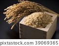 벼와 쌀 39069365