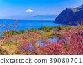 桃花 富士山 海洋 39080701