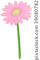 식물, 꽃, 플라워 39080782