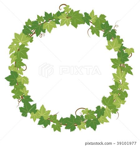 식물의 프레임 소재 39101977