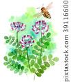 watercolour, watercolors, bee 39116600