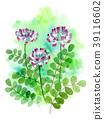 watercolour, watercolors, flower 39116602