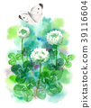 white clover, flower, small cabbage white butterfly 39116604