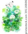 ดอกไม้,ผีเสื้อ,โคลเวอร์ 39116606
