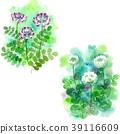 white clover, flower, lotus flower 39116609