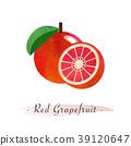 Colorful watercolor texture vector healthy fruit 39120647