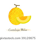 Colorful watercolor texture vector healthy fruit 39120675