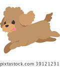 달리는 강아지 (푸들) 39121231