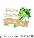 celery vegetable watercolor 39124298