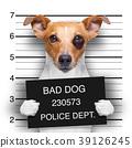mugshot dog at police station 39126245