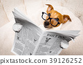 dog reading newspaper 39126252