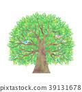 wood, small, bird 39131678