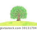 wood, large, tree 39131704