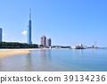 시사이드 모모치, 후쿠오카 타워, 해안 39134236