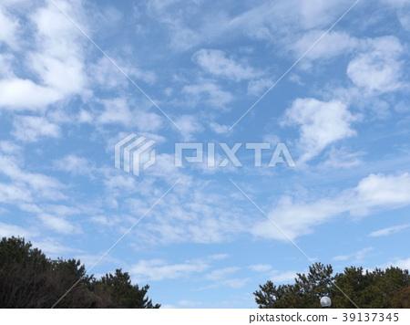 푸른 하늘, 파란 하늘, 청색 39137345