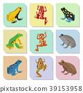 frog vector froggy 39153958