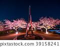 """""""神奈川縣""""松岡町,夜櫻花山 39158241"""