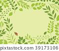 foliage leaf leafs 39173106