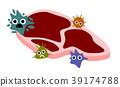 식중독, 균, 박테리아 39174788