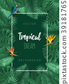 tropical leaves frame 39181765