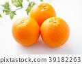 오렌지 39182263
