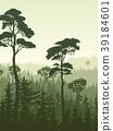 森林 樹林 垂直 39184601