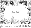 Hand Drawn Frame of Black Crowberry and Blackberry 39184624
