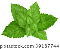 mint leaves isolated 39187744