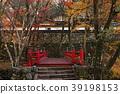 ต้นเมเปิล,ฤดูใบไม้ร่วง,ประเทศญี่ปุ่น 39198153