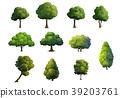 Illustration of trees   on white background 39203761