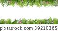 熱帶 樹葉 向量 39210365