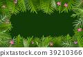 熱帶 樹葉 向量 39210366