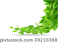 Green tea leaves vector nature background. 39210368