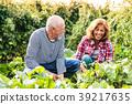 gardening, senior, family 39217635