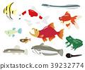 민물 생물 11 종 39232774