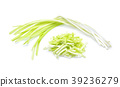 garlic chives isoalted on white background 39236279