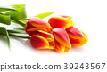 bouquet of yellow tulips isolated on white 39243567