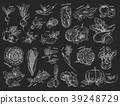 Sketches of vegetables. Vegetarian food 39248729